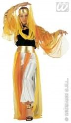 Karneval Damen Kostüm Harem Dancer