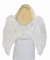 Karneval Engel Flügel Feder