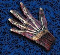 Karneval  Halloween Handschuhe des Grauens