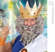 Karneval Herren Perücke Locken grau